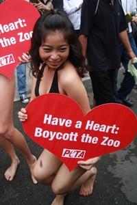 ZooMortality