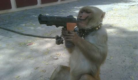 monkeygun